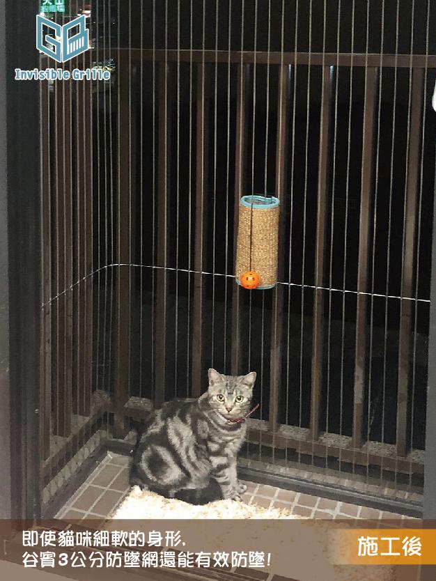 貓咪防墜樓 ,高雄隱形鐵窗